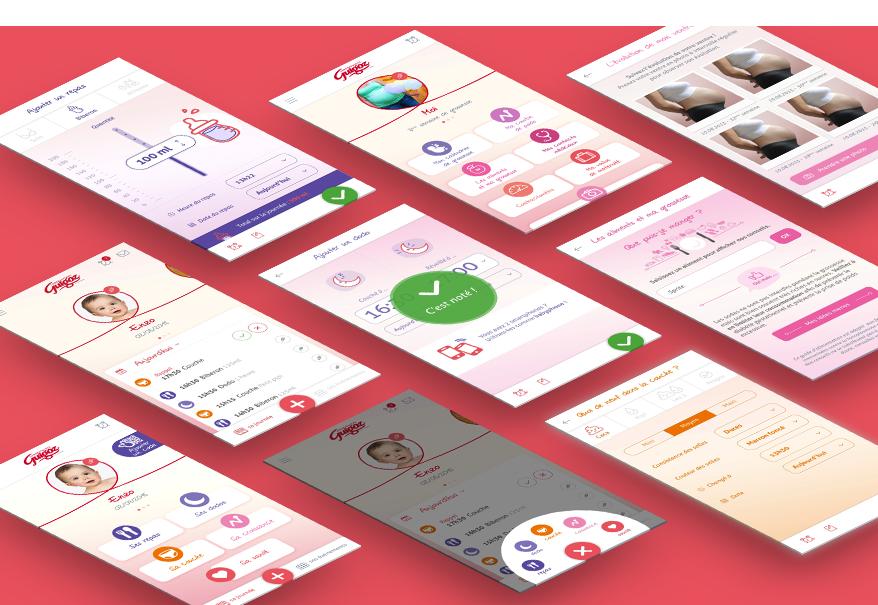 Cam.Lab. webdesign Guigoz Application